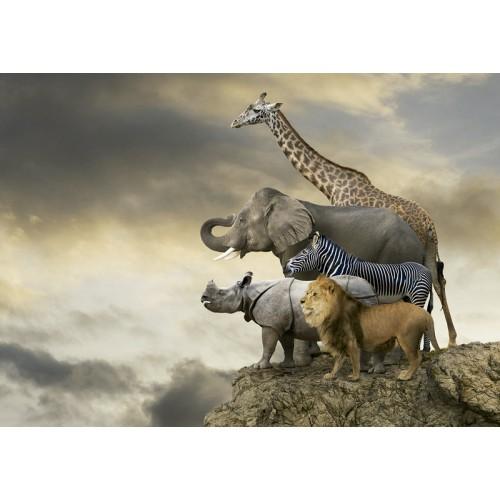 PUZZLE 500 PZS ANIMALES AL BORDE DEL ABISMO