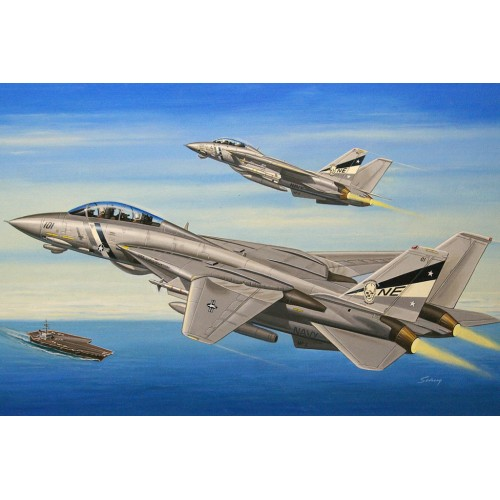 GRUMMAN F-14 D SUPERTOMCAT